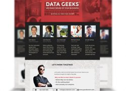 Data Geeks Flyer